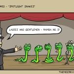 102-spotlight_snakes